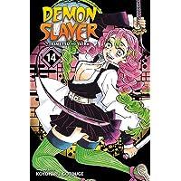 Demon Slayer: Kimetsu no Yaiba, Vol. 14 (Volume 14)