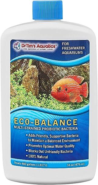Amazon Com Dr Tim S Aquatics Freshwater Eco Balance Probiotic Bacteria For Freshwater Aquaria Fish Tanks Aquariums Blocks Unfriendly Bacteria Promotes Optimal Water Quality 100 Natural 480 Gallons Pet Supplies