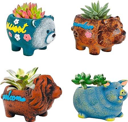 Set of 4 Colorful Ceramic Succulent Planter