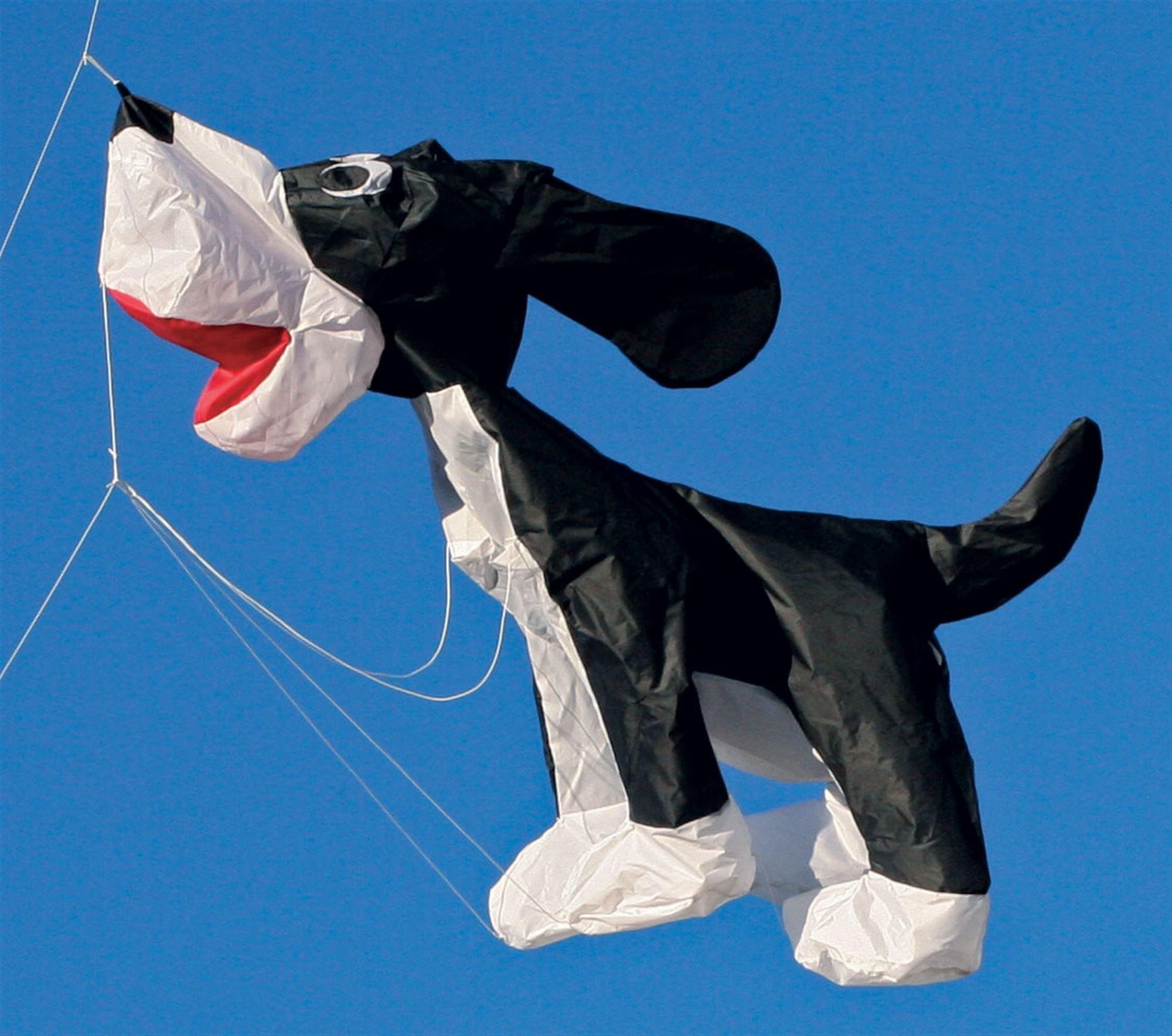 4-ft Skippy Jr Kite Line Laundry