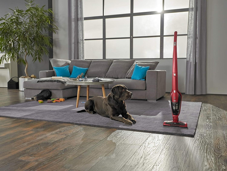 Staubsauger für Teppich
