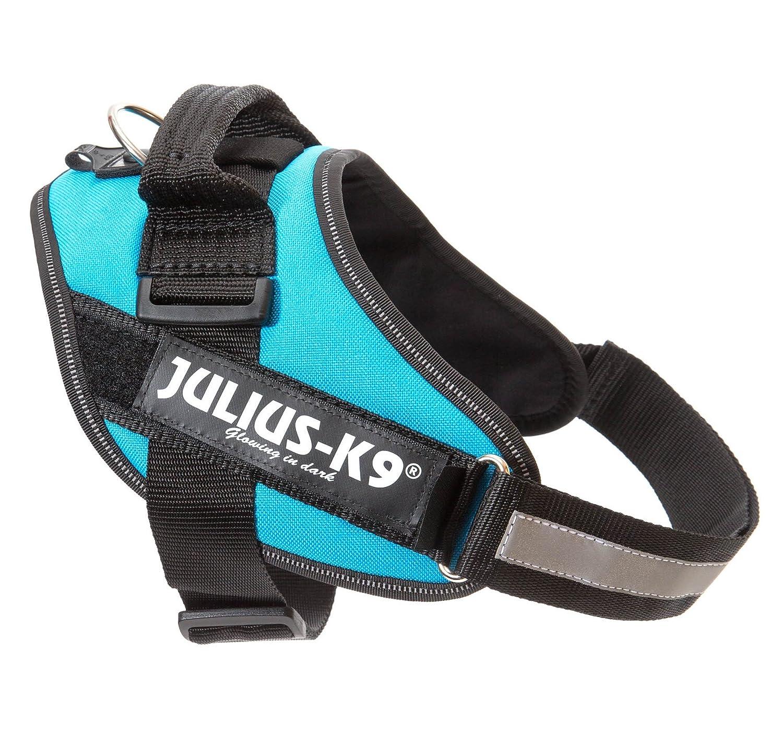 Julius-K9 IDC-Power Harnais pour Chien Bleu Aquamarine Taille 0