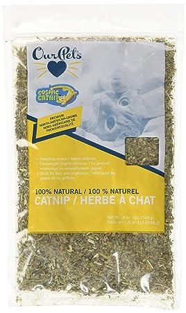 Hierba gatera de Ourpets, Viene en Bolsa de plástico, Hierba para Gatos, 0,5 onzas: Amazon.es: Productos para mascotas