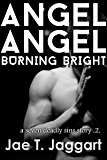 Angel Angel, Burning Bright (A Seven Deadly Sins Story Book 2)