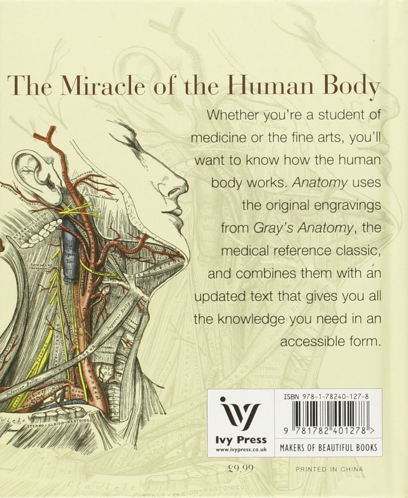 Anatomy: A Complete Guide to the Human Body, for Artists & Students ...