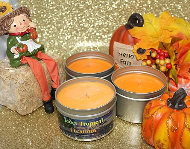 Amazon.com: Fall Scented Soy Tin Candle 8 oz, Pumpkin Spice, Autumn Collection: Handmade