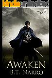 Awaken (The Mortal Mage Book 1) (English Edition)