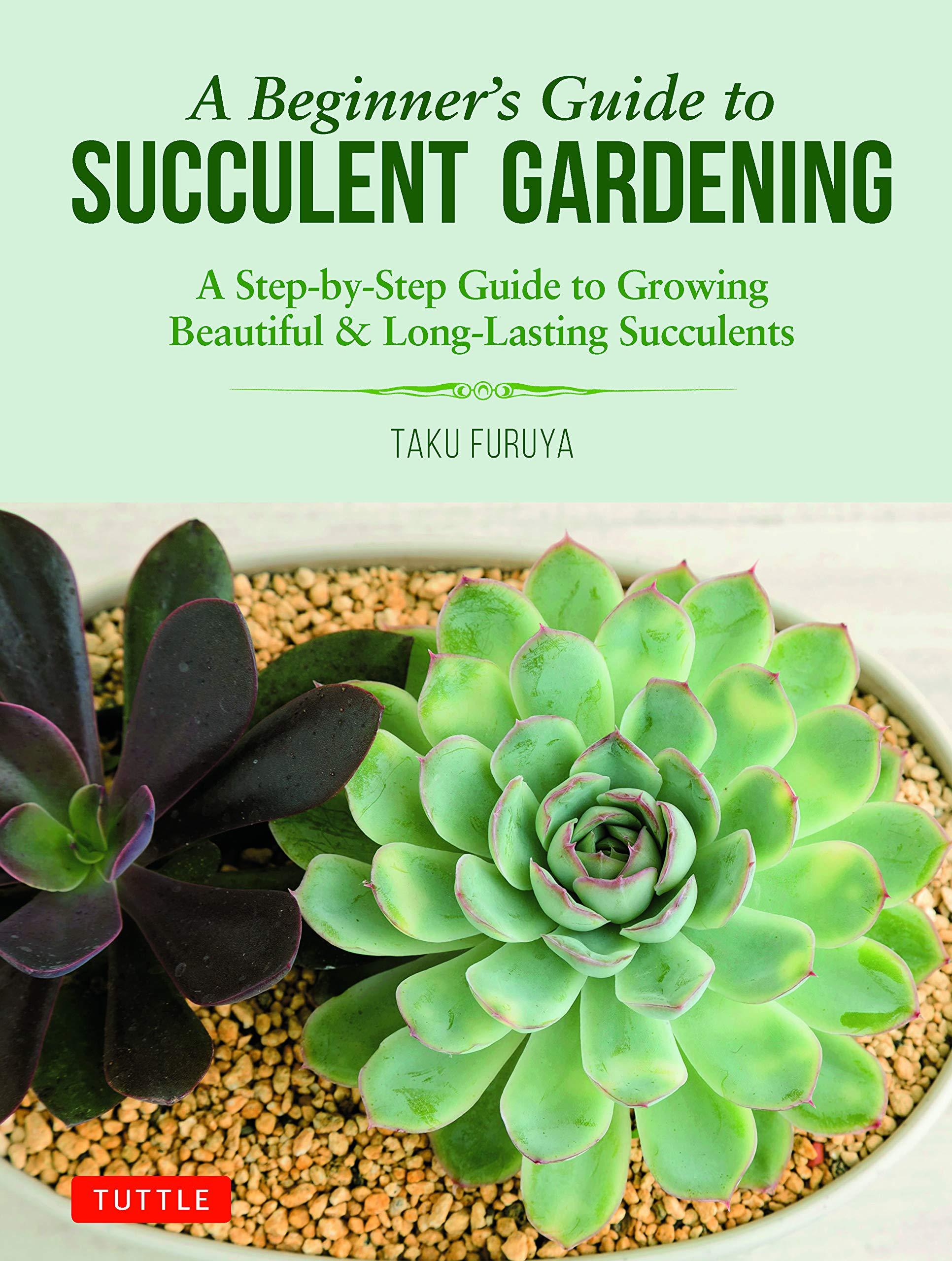 Succulent To Echeveria Guide 1000 Hybrid Succulent Bizarre Plant Book F//S