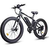 """ECOTRIC Electric Powerful Bicycle 26"""" Fat Tire Bike 500W 36V/12AH Battery EBike Moped Snow Beach Mountain Ebike Throttle…"""