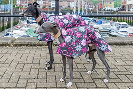 Abrigo de forro polar impermeable para galgo, edición limitada, de Dog and
