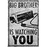 Pyramid America Big Brother is Watching You CCTV Camera Sign Cool Wall Decor Art Print Poster 24x36