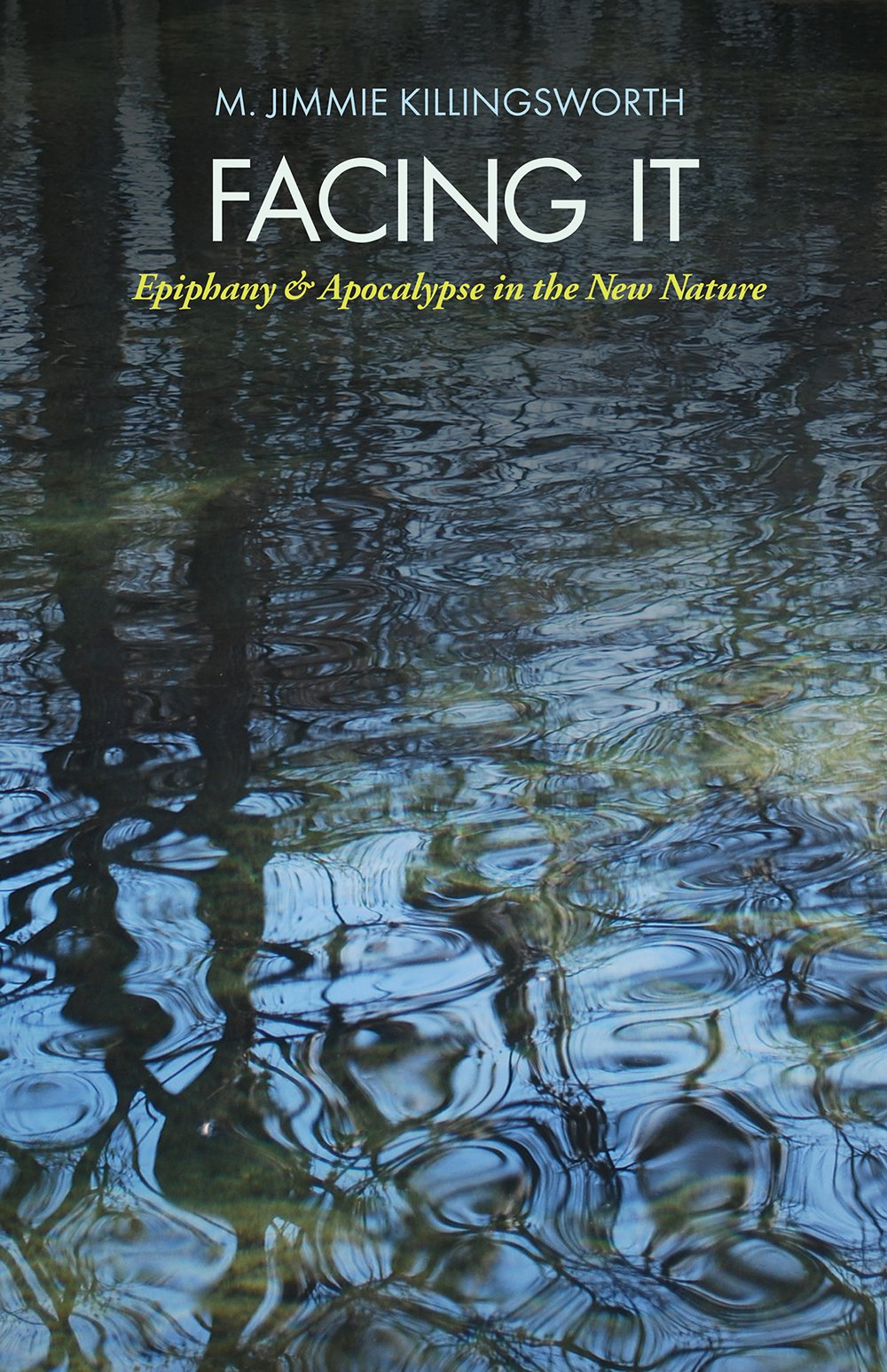 Download Facing It: Epiphany and Apocalypse in the New Nature (The Seventh Generation: Survival, Sustainability, Sustenance in a New Nature) pdf epub