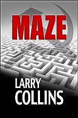 Maze Kindle Edition