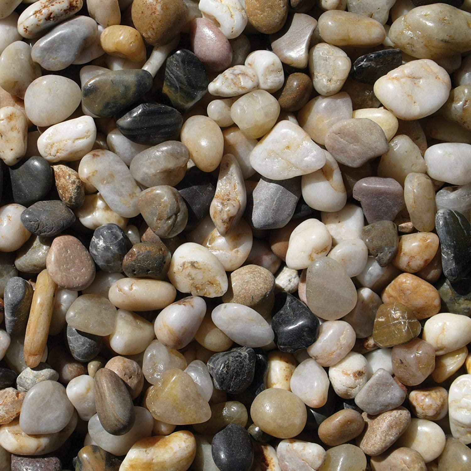 Exotic Pebbles PMS0510 Polished Gravel, Mixed, 5 Pounds, 3/8-Inch : Outdoor Decorative Stones : Garden & Outdoor