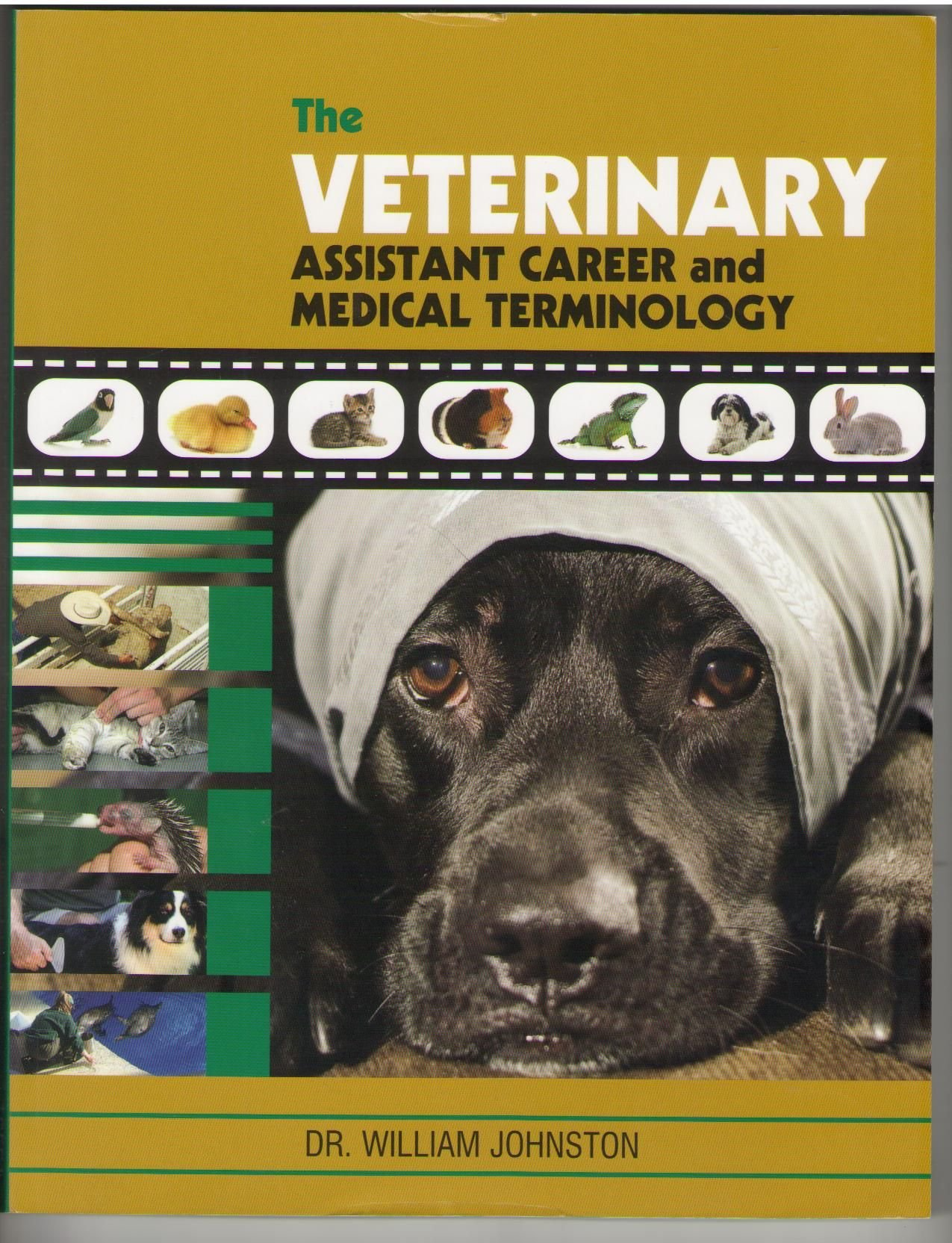 the veterinary assistant career and medical terminology dr the veterinary assistant career and medical terminology dr william johnston 9782923623306 com books