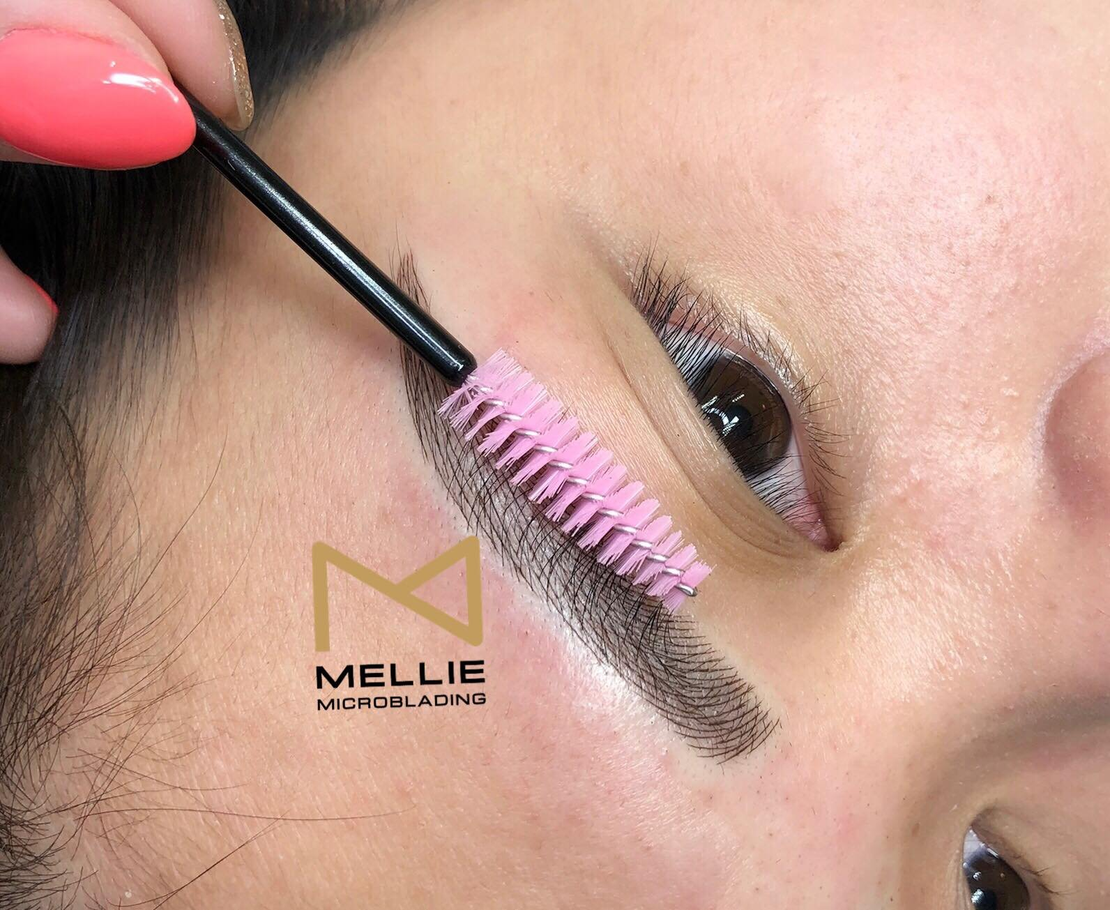 Mellie Microblading Disposable Microblading Pen U18 Blade with Pigment Sponge 10 PCS