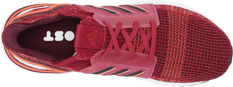 adidas Ultraboost 19, Chaussure de Course Homme Marron Noir Marron