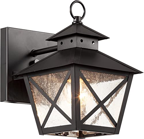 Trans Globe Lighting 40170 BK Outdoor Wall Light with Seeded Glass Shade, Black Finished