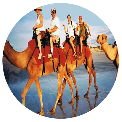 Rules to play Camel Riding