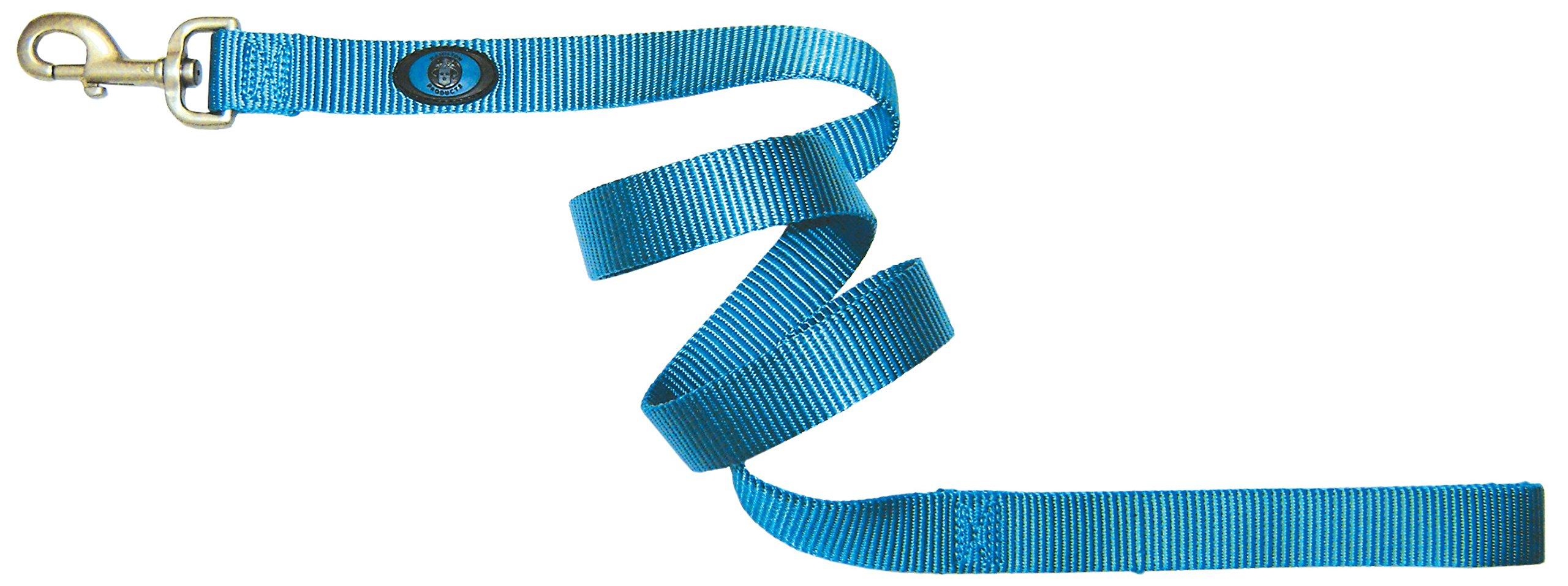 Hamilton 1-Inch Single Thick Nylon Lead with Swivel Snap Brushed Hardware, 6-Feet/Long, Ocean Blue