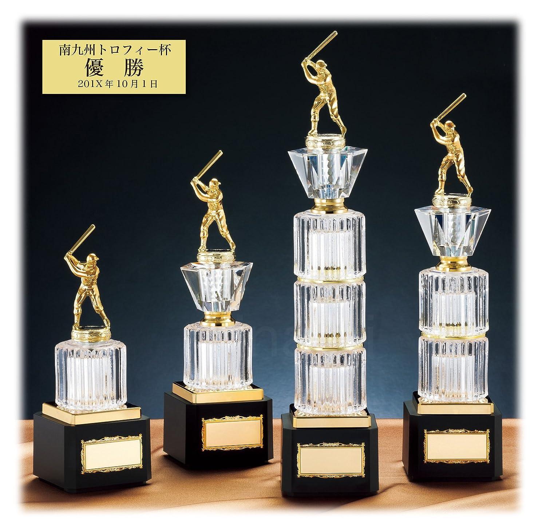 [レーザー彫刻名入れ] GOLD SHACHI 優勝カップ CGV7487 B01DBR0LJS Cサイズ 高さ29cm 重さ740g|23.ボクシング 23.ボクシング Cサイズ 高さ29cm 重さ740g