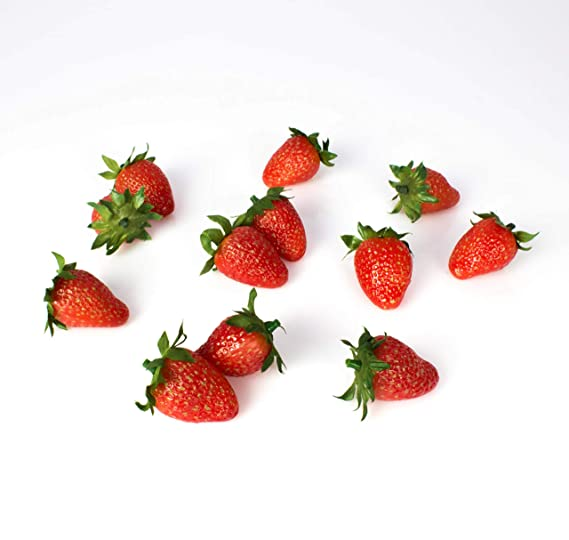 Simulation R/éaliste Faux Fruit Jouet Maison Cuisine Partie Cabinet D/écoration XINTECH 20pcs R/éaliste Artificielle Mini Fraise