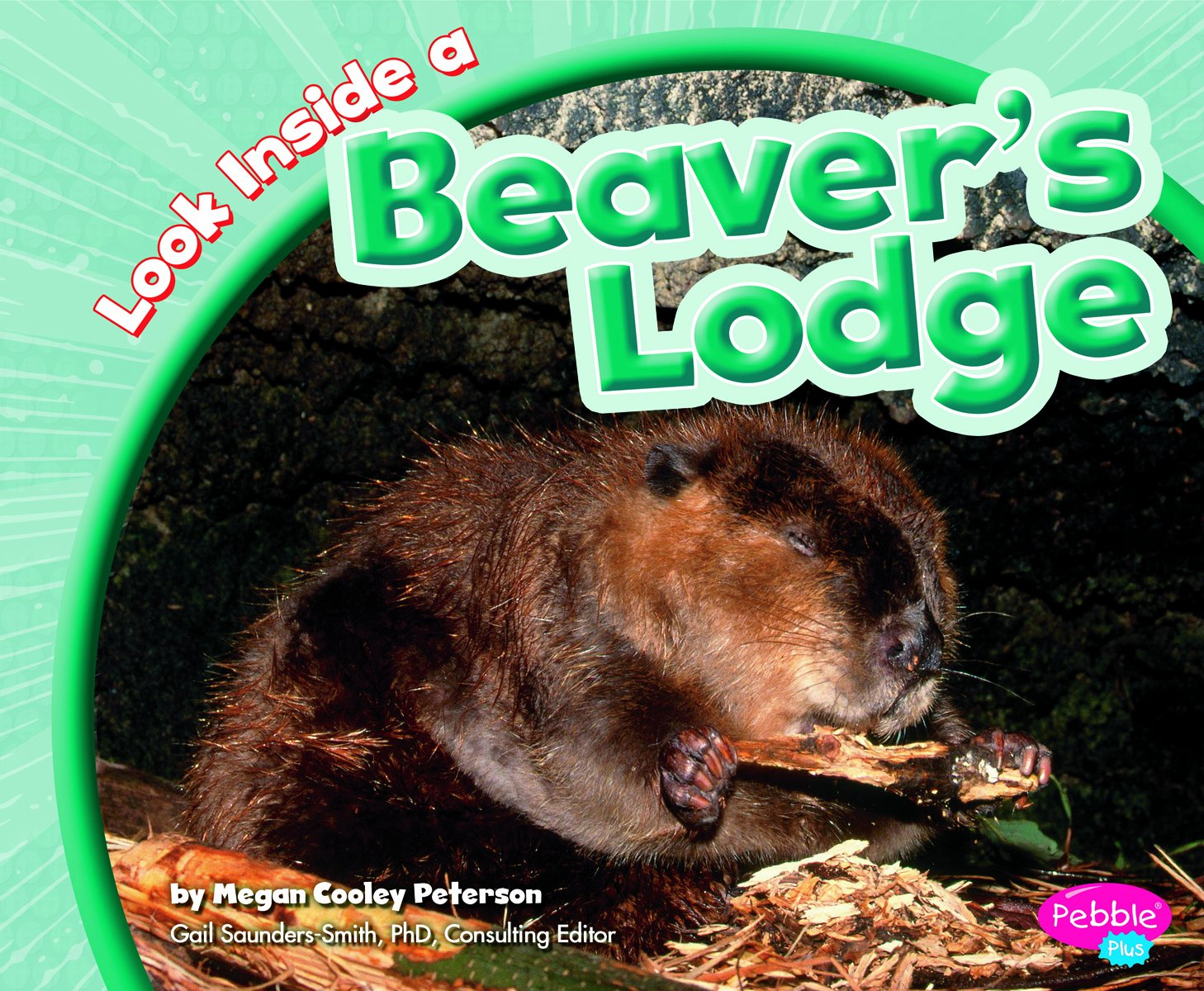 Download Look Inside a Beaver's Lodge (Look Inside Animal Homes) ebook