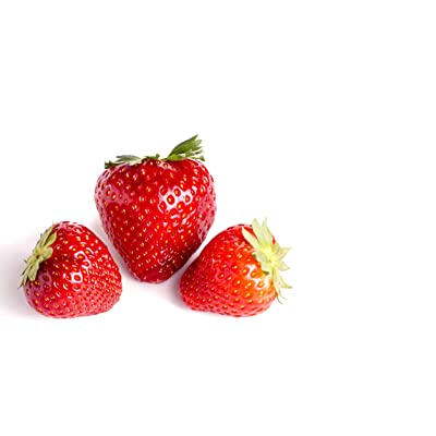 Delizzimo Strawberry 315 Seeds + 1 Free Plant Marker - Plentiful harvests, Everbearing : Garden & Outdoor