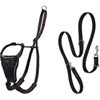 Halti No Pull Harness and Training Lead Combination Pack, Stop Dog Pulling on Walks with Halti, Includes Large Halti No…