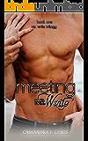 Meeting Mr. Write (Mr. Write Trilogy Book 1)