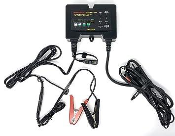 Amazon.com: BatteryMINDer Cargador-desulfador, 12V ...