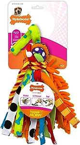 Nylabone Happy Moppy Interactive Dog Toy