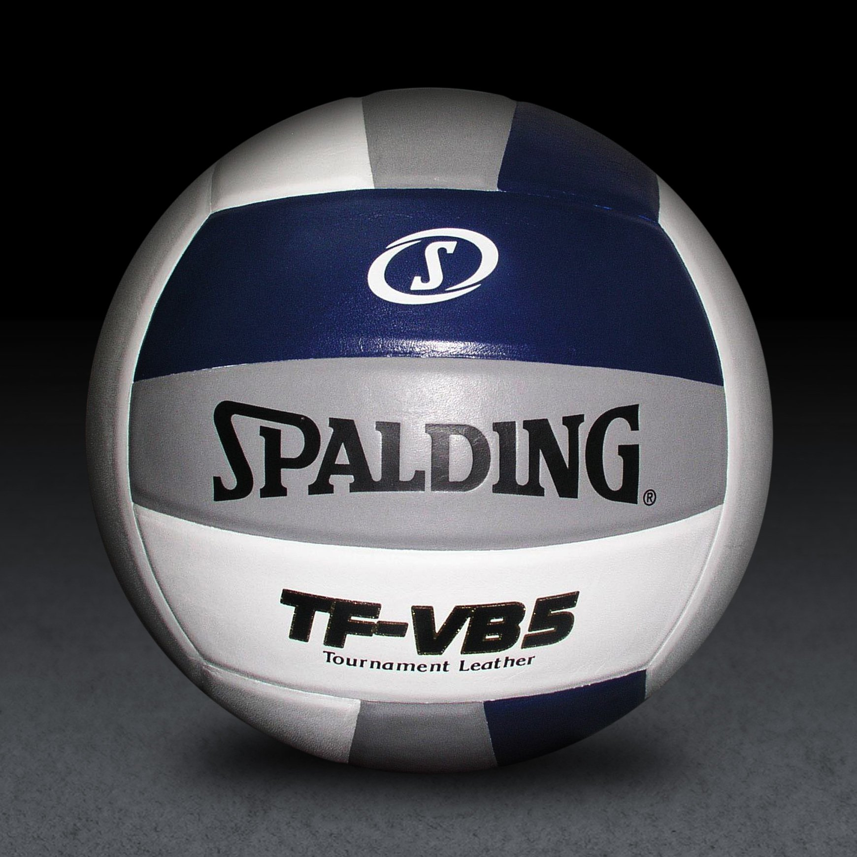 Spalding TF-VB5 Navy/Silver/White