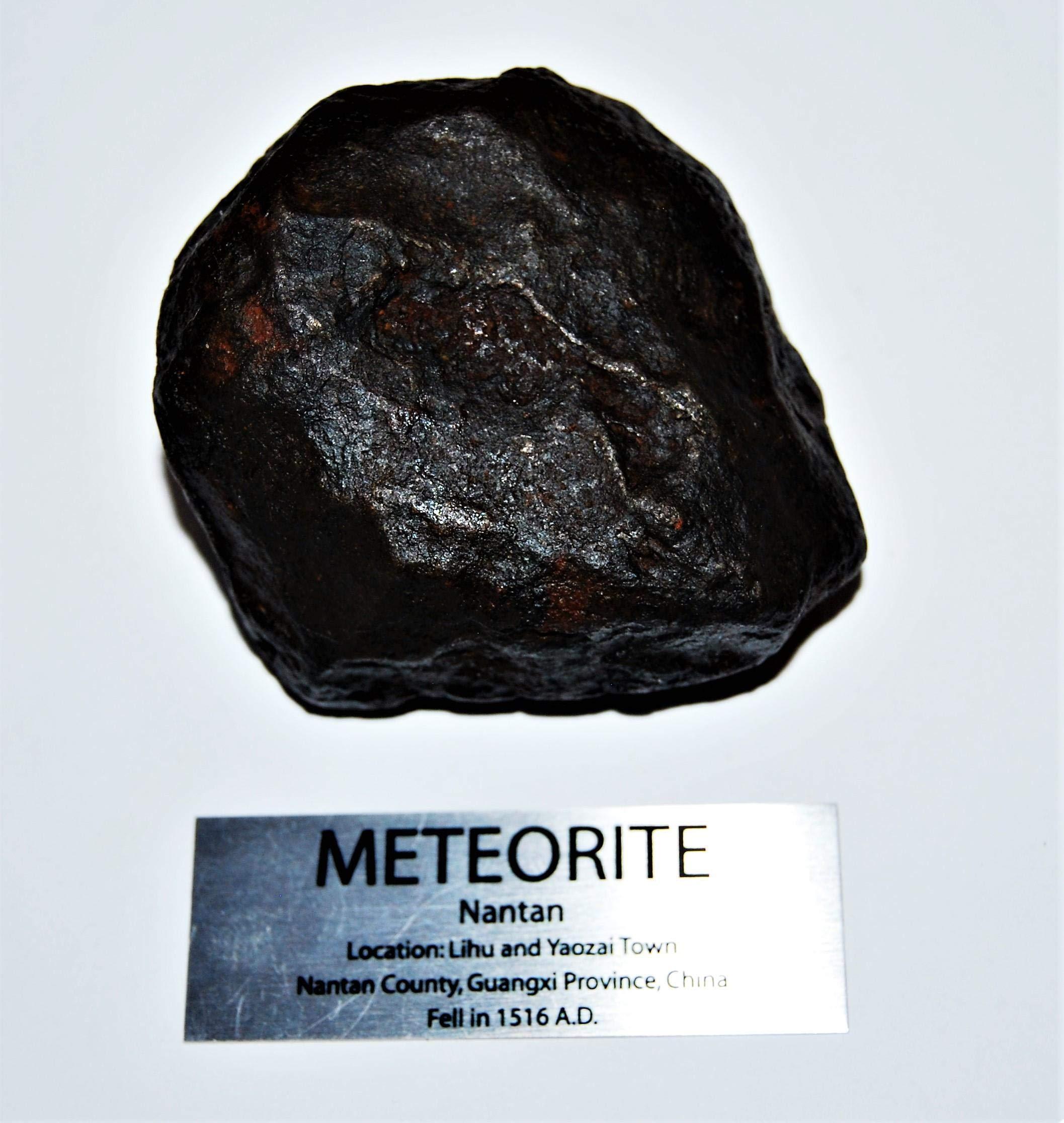 Fossil, Meteorites, & More NANTAN Iron Nickel Meteorite -Genuine-810.7 Gram + Label & COA# 14349 30o