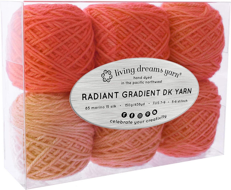 Living Dreams Radiant Gradient DK Yarn. Super Soft Merino Silk. USA Hand Dyed: Coral Reef