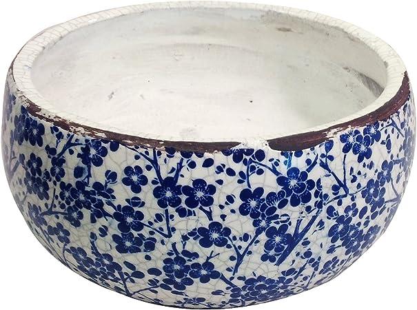 Amazon.com: Nuevo diseño viejo mundo Vintage azul y blanco ...