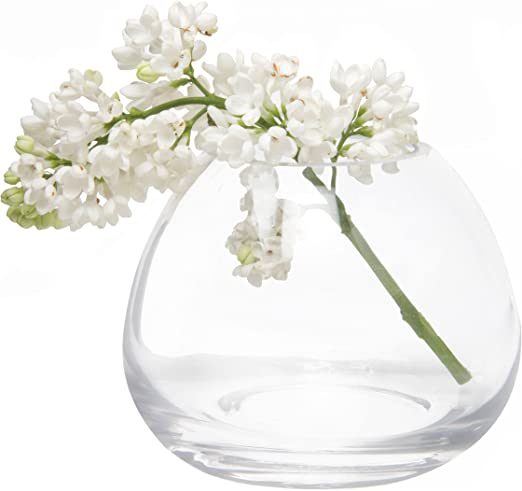 Amazon Com Chive Set 6 George Shape 3 3 Inch Wide 3 Inch Tall Unique Clear Glass Flower Vase Small Elegant Oval Bud Vase Decorative Floral Vase Home Kitchen