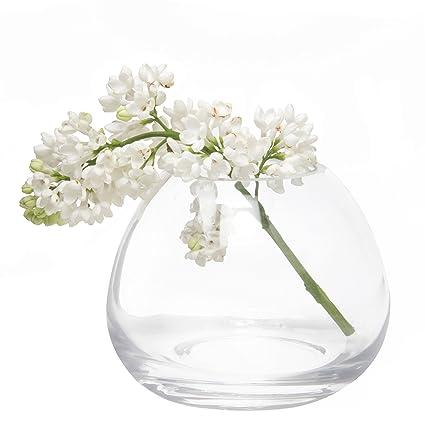 Amazon Chive George Shape 3 Unique Clear Glass Flower Vase
