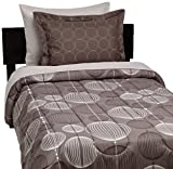 AmazonBasics 5-Piece Bed-In-A-Bag, Twin/Twin