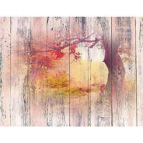 Fototapeten Wald Holzoptik 352 x 250 cm Vlies Wand Tapete Wohnzimmer ...