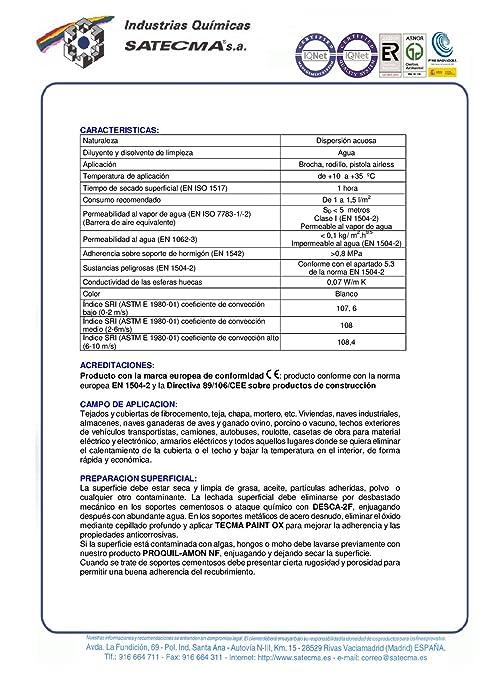 Pintura impermeabilizante y de aislamiento del calor TECMA PAINT TERMIC FAHRENHEIT 10.8 - SATECMA: Amazon.es: Bricolaje y herramientas