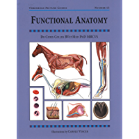 FUNCTIONAL ANATOMY (Threshold Picture Guides)