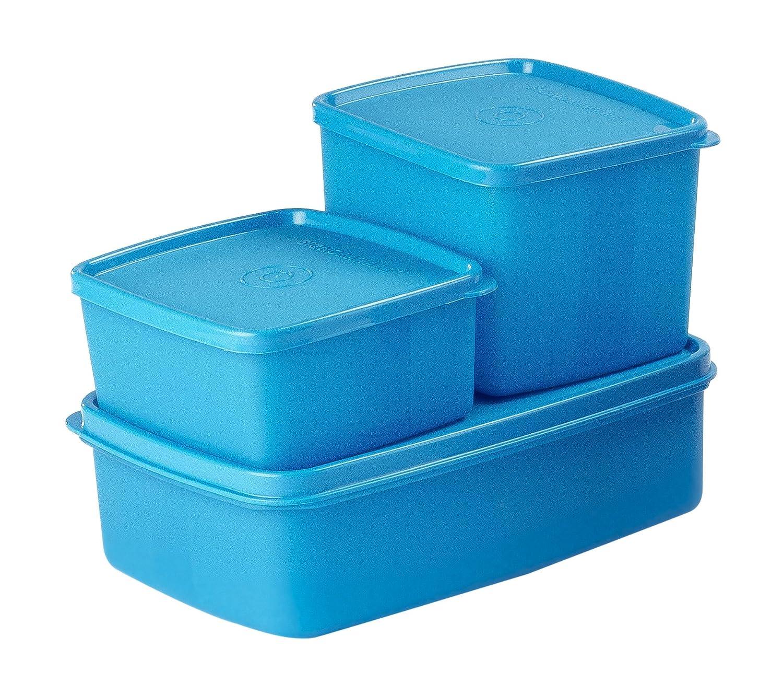 Signoraware Mini Plastic Fridge Container Set, 3-Pieces, Blue