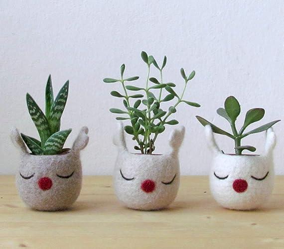 Christmas Succulent Planters.Amazon Com Christmas Reindeer Planter Christmas Felt Vase
