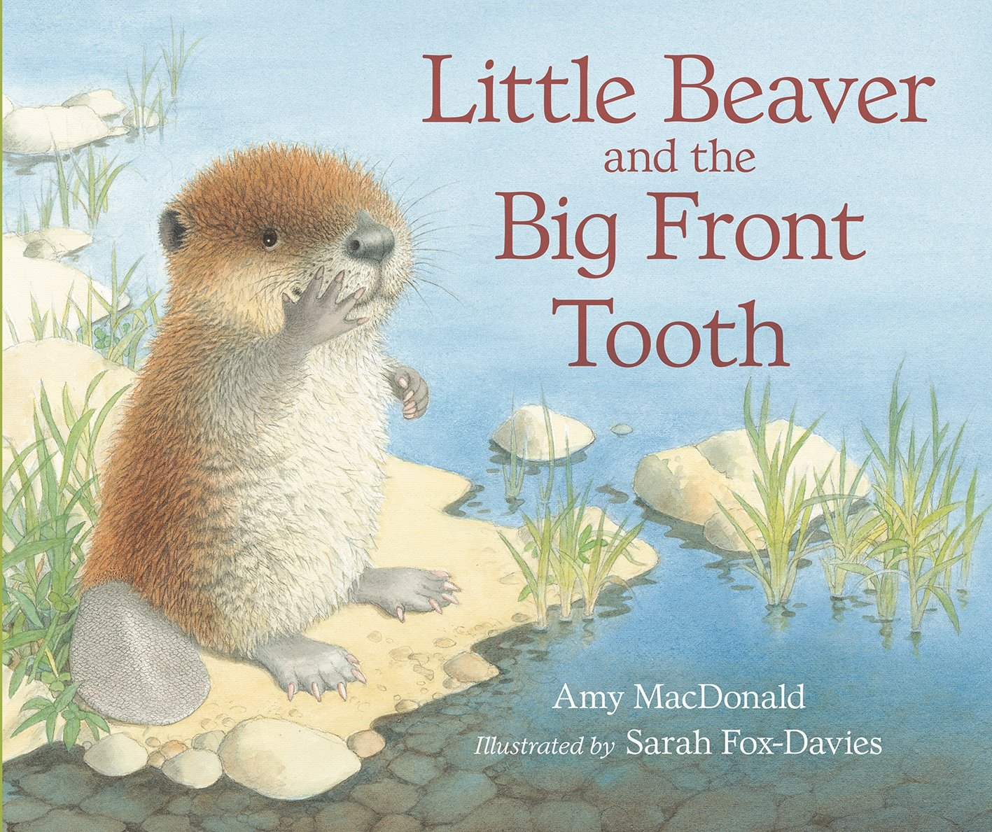 Download Little Beaver and the Big Front Tooth pdf