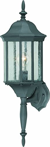 Thomas Lighting SL94517 Hawthorne Outdoor Wall Lantern, Black