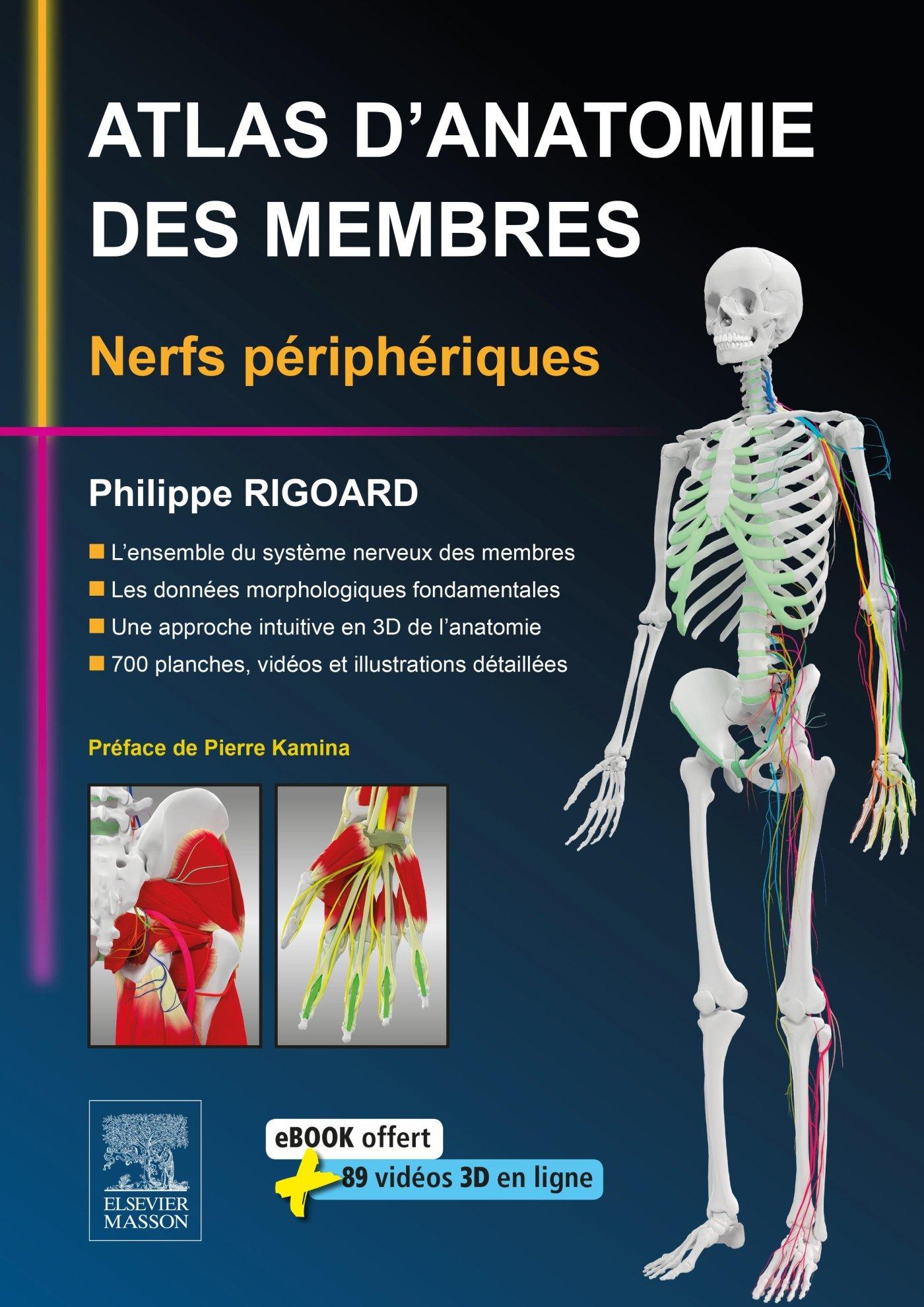 Charmant Anatomieatlas App Zeitgenössisch - Anatomie Und Physiologie ...