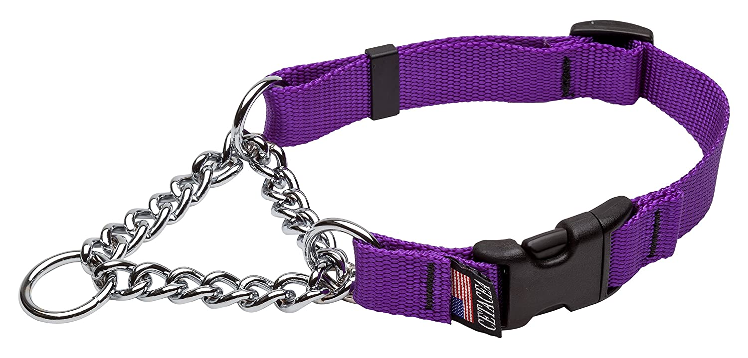 Purple Large Purple Large Cetacea Chain Martingale Dog Pet Collar with Quick Release, Large, Purple