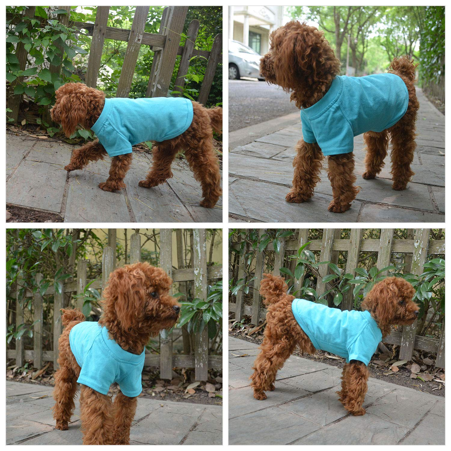 longlongpet 2019 Blank Dog T-Shirt Basic Tee Shirts for Large Medium Small Dogs 100/% Cotton Puppy Clothing For Chihuahua XS Turquoise