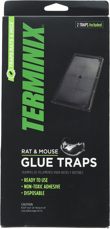 Terminix Rat T402 Rat & Mouse Glue Trap, 2 Pack